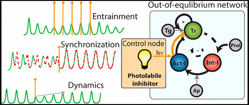 Photochemical Control over Oscillations in Chemical Reaction Networks