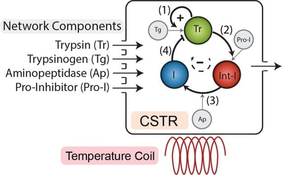 Dynamic Environments as a Tool to Preserve Desired Output in a Chemical Reaction Network